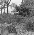 Overzicht historische begraafplaats - 20652979 - RCE.jpg