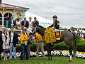 Oxbow and Gary Stevens at 2013 Preakness Stakes.jpg