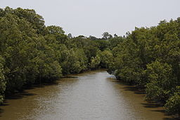 Oxley Creek, Brisbane 1a.jpg