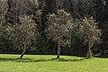 Pörtschach Winklern Brockweg Am Kåte Birnbaumallee 10042016 1249.jpg