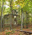 Přírodní rezervace Malý Blaník, ruiny kaple.JPG