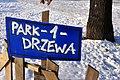 PARK -1- DRZEWA - panoramio.jpg