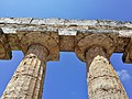 Paestum - Particolare dei capitelli del Tempio di Hera.jpg