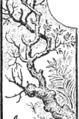 Page 120 middle illustration from The Fables of Æsop (Jacobs).png
