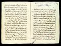 Pages from an Arab Text Wellcome L0033635.jpg