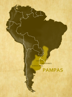 Approximate location and borders of the Pampas encompassing the southeastern area of South America bordering the Atlantic Ocean