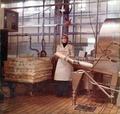 Pannello fotografico lavorazione Parmigiano-Reggiano (1 di 6) - Musei del cibo - Parmigiano - 219.tif