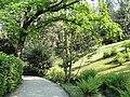 Parco della Villa Pallavicino - Stresa - DSC03148.JPG