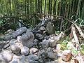 Parco di pinocchio 20 il granchio 02.JPG