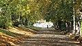 Parcul Central (3040288061).jpg