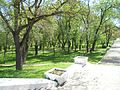 Parcul Central BL.jpg