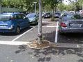 Parkplatzbewirtschaftung.jpg