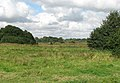 Pasture land west of Heckingham - geograph.org.uk - 1493121.jpg