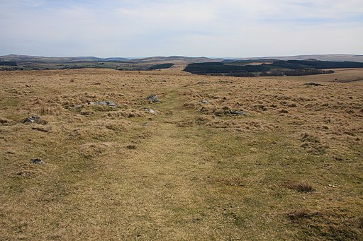 Path over Broad Down - geograph.org.uk - 1800316