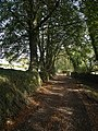 Path to the Holy Well - geograph.org.uk - 589453.jpg