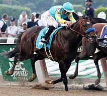 Bay racehorse with rider in turquoise and yellow silks