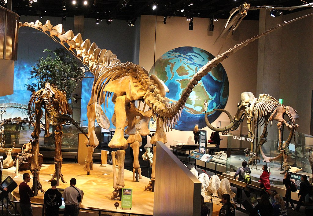 Perot Museum of Nature and Science - Virtual Tour