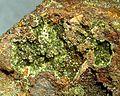 Pharmacosiderite-Scorodite-255018.jpg