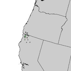 Picea breweriana range map 4.png