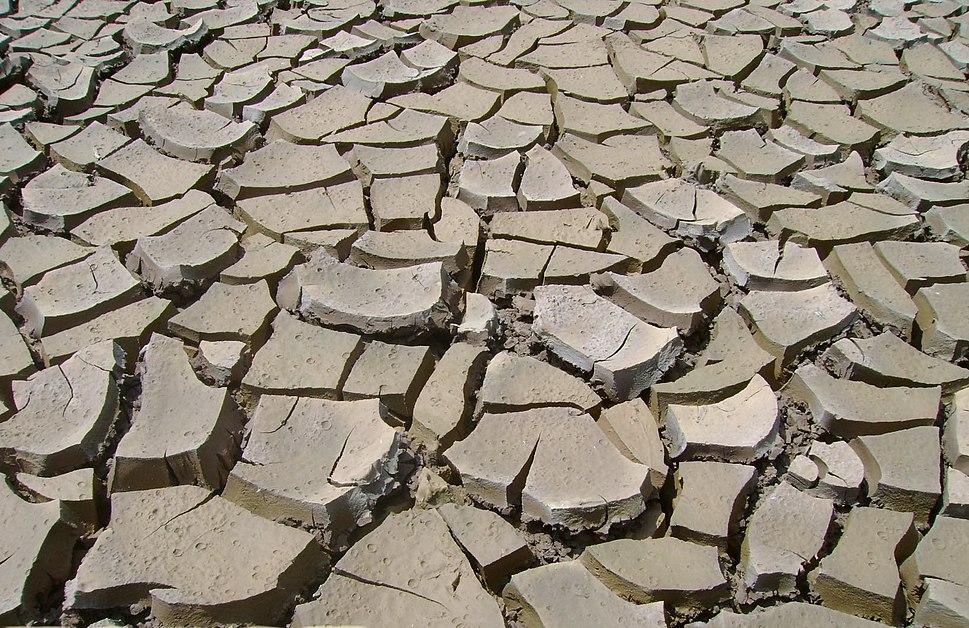 PikiWiki Israel 14738 thirsty soil