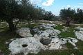PikiWiki Israel 16441 Al-Moalak Mountain.jpg