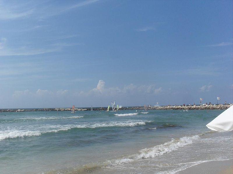 ים שרתון
