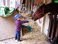 PikiWiki Israel 44357 Kibbutz Netiv halemed Ha.jpg