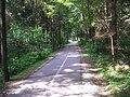 Pioneer railway,Ljubljana-bicycle lane.jpg