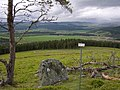 Pipers Stone - geograph.org.uk - 433278.jpg