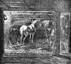 Pit pony - Nineteenth-century illustration of a stable in a mine.