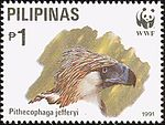Pithecophaga jefferyi 1991 stamp of the Philippines 1.jpg