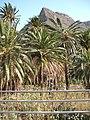 Plantage - panoramio.jpg