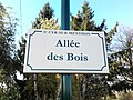 Plaque Allée Bois St Cyr Menthon 2011-11-23.jpg