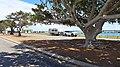 Point Leander Drive, Port Denison, 2014 (04).JPG
