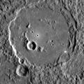 Polygnotus EW0131770421C cropped.png