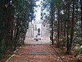 Pomnik w lesie przy ulicy Turystycznej. - panoramio.jpg