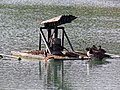 Pond aerator waterbird platform at Matching, Essex, England 02.jpg
