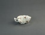 Porslin. Vitt saltkar med blomsterdekor - Hallwylska museet - 89169.tif