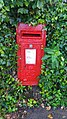 Post box and ivy.jpg