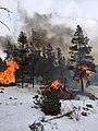Prescribed burn - Shoshone National Forest - November 2017 01.jpg