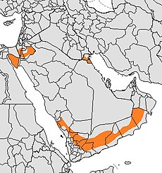 Present distribution of the gray wolf subspecies - Arabian wolf (Canis lupus arabs).jpg