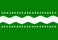 Proposta de bandeira do Amazonas.png