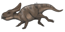 Protoceratops reconstruction.png