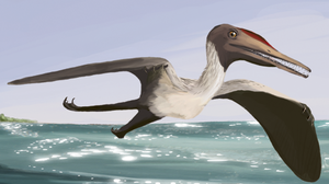 Timeline of pterosaur research - Life restoration of the first scientifically studied pterosaur, Pterodactylus