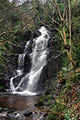 Quarry Falls, Laxey - geograph.org.uk - 639844.jpg
