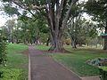 Queens Park, Toowoomba 01.JPG