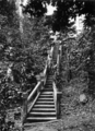 Queensland State Archives 1340 The Stairway Paronella Park Innisfail c 1935.png