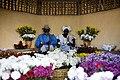 Quilombo dos Palmares é palco de reflexão e festa no 20 de novembro (31140469476).jpg