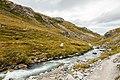 Río Savage, Parque nacional y reserva Denali, Alaska, Estados Unidos, 2017-08-29, DD 94.jpg