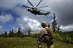RIMPAC partners conduct Non-Combatant Evacuation Operation training 140726-M-QQ799-119.jpg